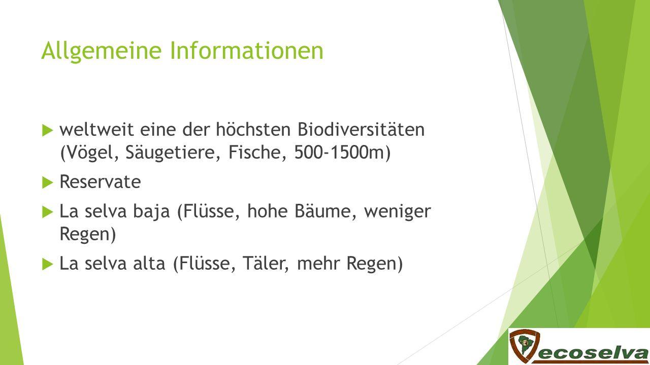 Allgemeine Informationen weltweit eine der höchsten Biodiversitäten (Vögel, Säugetiere, Fische, 500-1500m) Reservate La selva baja (Flüsse, hohe Bäume
