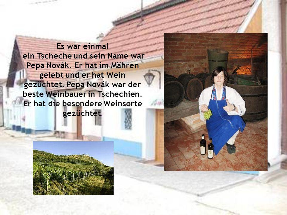 Es war einmal ein Tscheche und sein Name war Pepa Novák. Er hat im Mähren gelebt und er hat Wein gezüchtet. Pepa Novák war der beste Weinbauer in Tsch