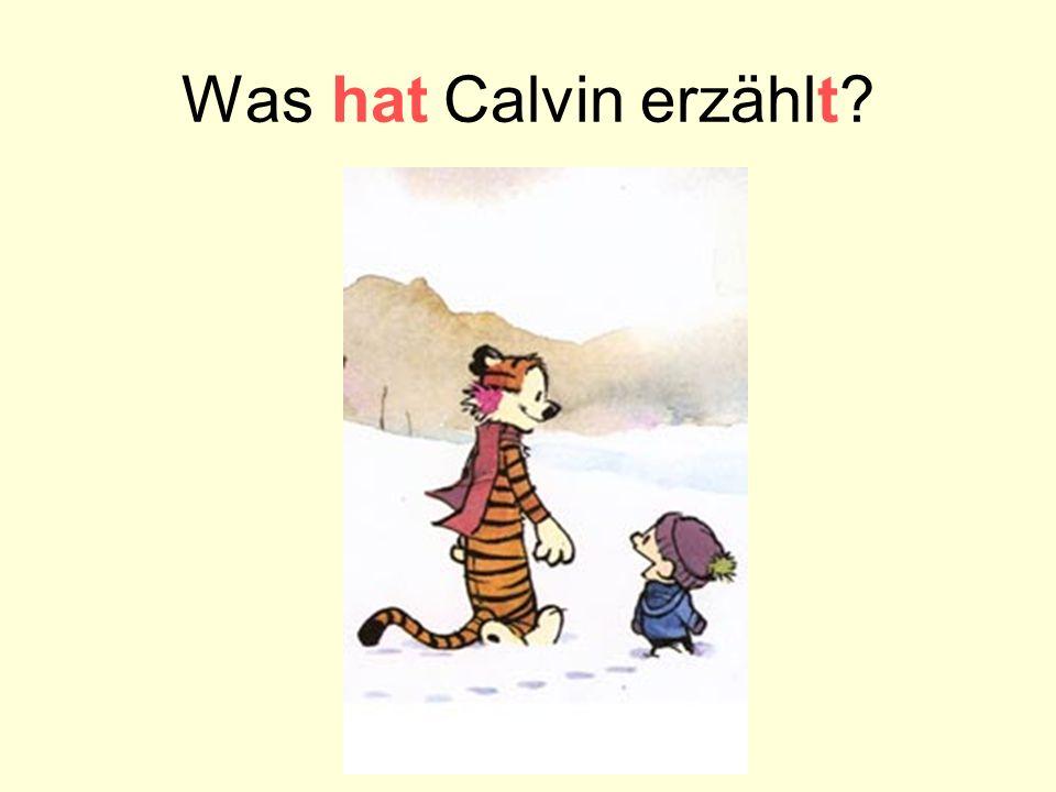 Was hat Calvin erzählt?