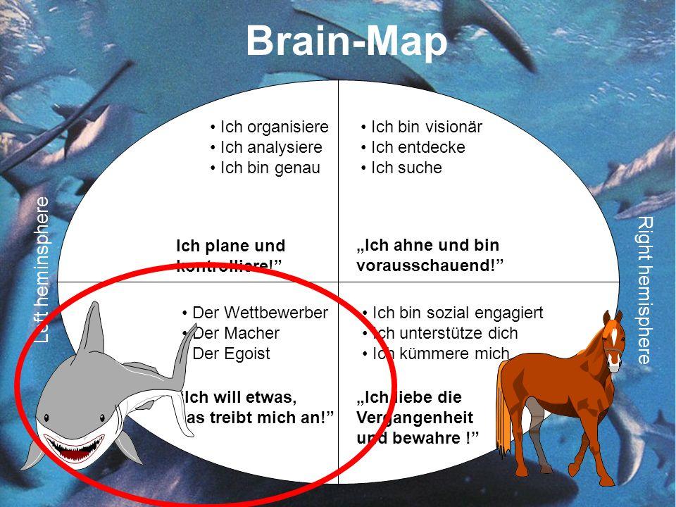 Brain-Map Left heminsphere Right hemisphere Ich organisiere Ich analysiere Ich bin genau Ich bin visionär Ich entdecke Ich suche Der Wettbewerber Der Macher Der Egoist Ich bin sozial engagiert Ich unterstütze dich Ich kümmere mich Ich plane und kontrolliere.