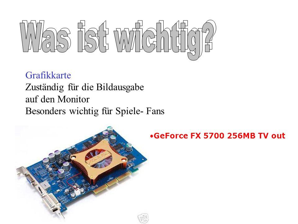 GeForce FX 5700 256MB TV out Grafikkarte Zuständig für die Bildausgabe auf den Monitor Besonders wichtig für Spiele- Fans