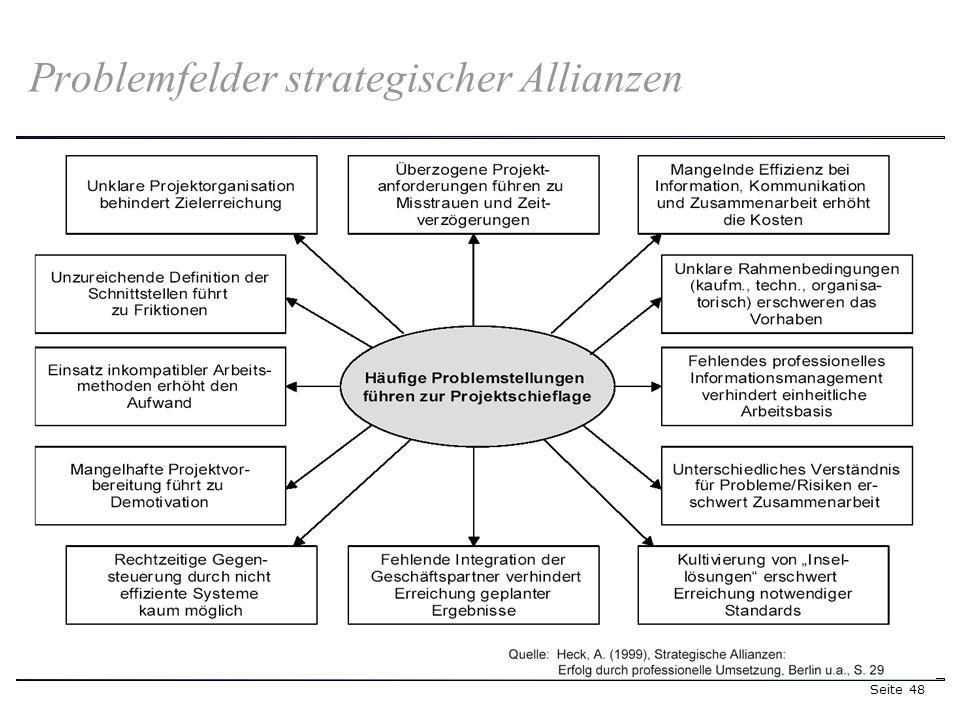 Seite 48 Problemfelder strategischer Allianzen