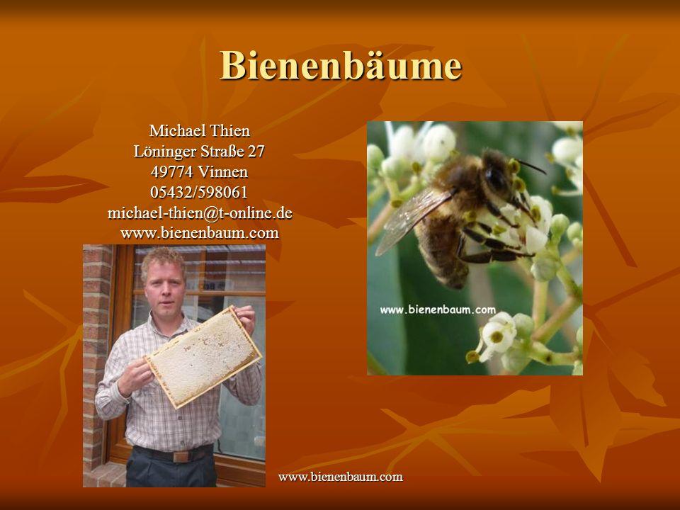 www.bienenbaum.com Bienenbäume Michael Thien Löninger Straße 27 49774 Vinnen 05432/598061michael-thien@t-online.dewww.bienenbaum.com