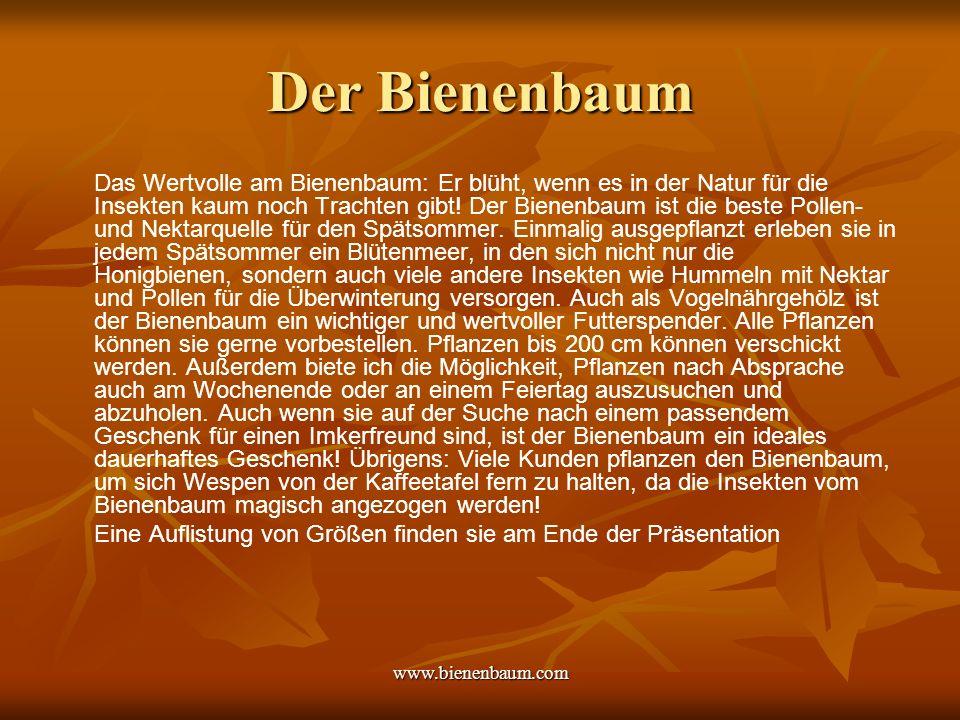 www.bienenbaum.com Der Bienenbaum Name: Eu = gut, odia = Duft = Wohlduft, weil angenehmer Blütenduft, und aromatische Belaubung.