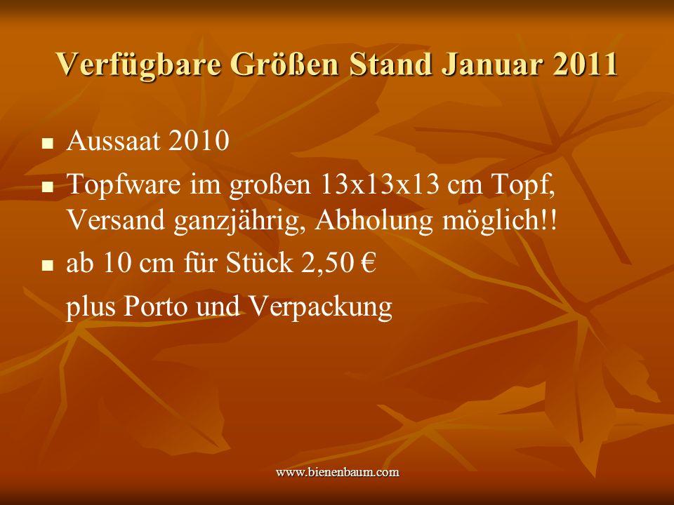www.bienenbaum.com Verfügbare Größen Stand Januar 2011 Aussaat 2010 Topfware im großen 13x13x13 cm Topf, Versand ganzjährig, Abholung möglich!.