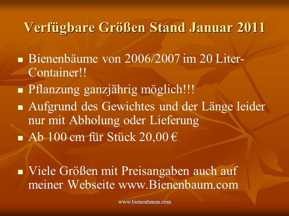 www.bienenbaum.com Verfügbare Größen Stand Januar 2011 Bienenbäume von 2006/2007 im 20 Liter- Container!.