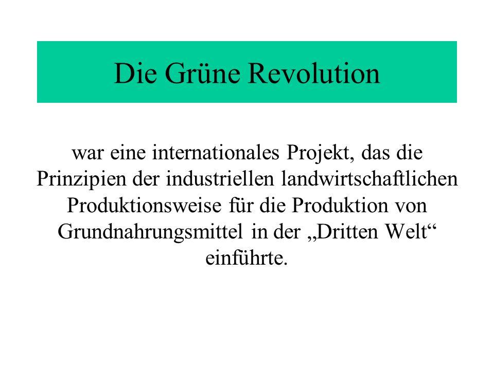 Die Grüne Revolution war eine internationales Projekt, das die Prinzipien der industriellen landwirtschaftlichen Produktionsweise für die Produktion v