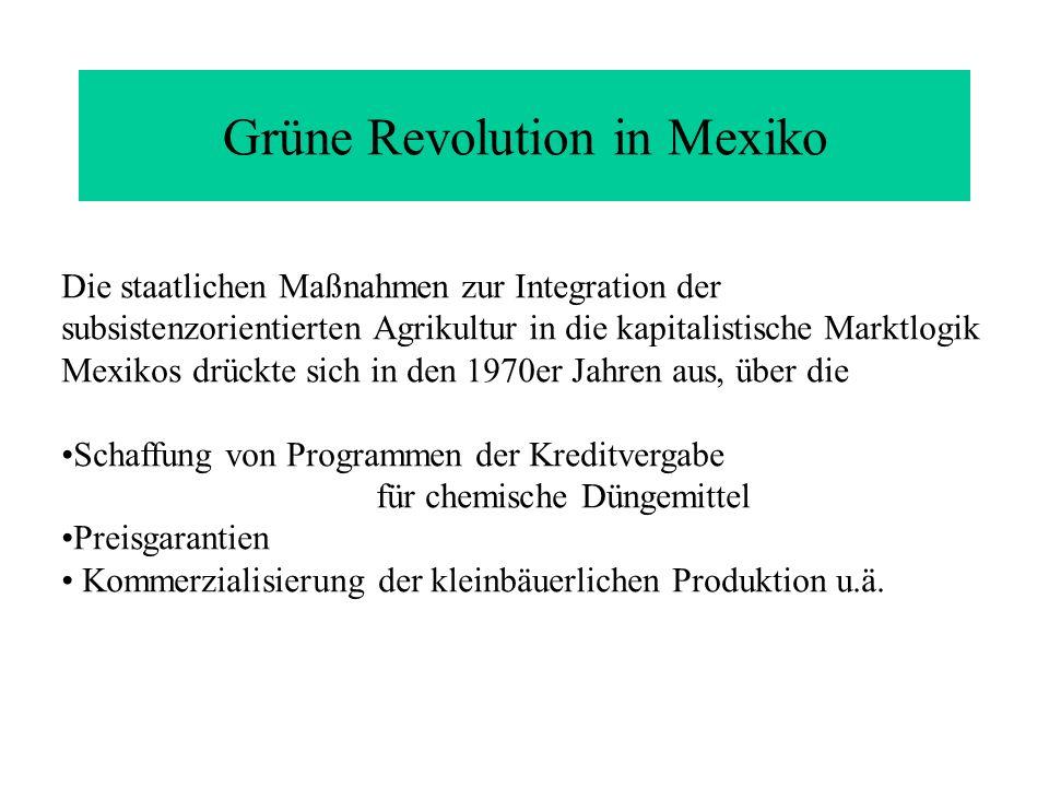 Die staatlichen Maßnahmen zur Integration der subsistenzorientierten Agrikultur in die kapitalistische Marktlogik Mexikos drückte sich in den 1970er J