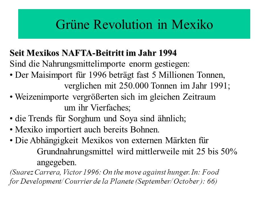 Grüne Revolution in Mexiko Seit Mexikos NAFTA-Beitritt im Jahr 1994 Sind die Nahrungsmittelimporte enorm gestiegen: Der Maisimport für 1996 beträgt fa