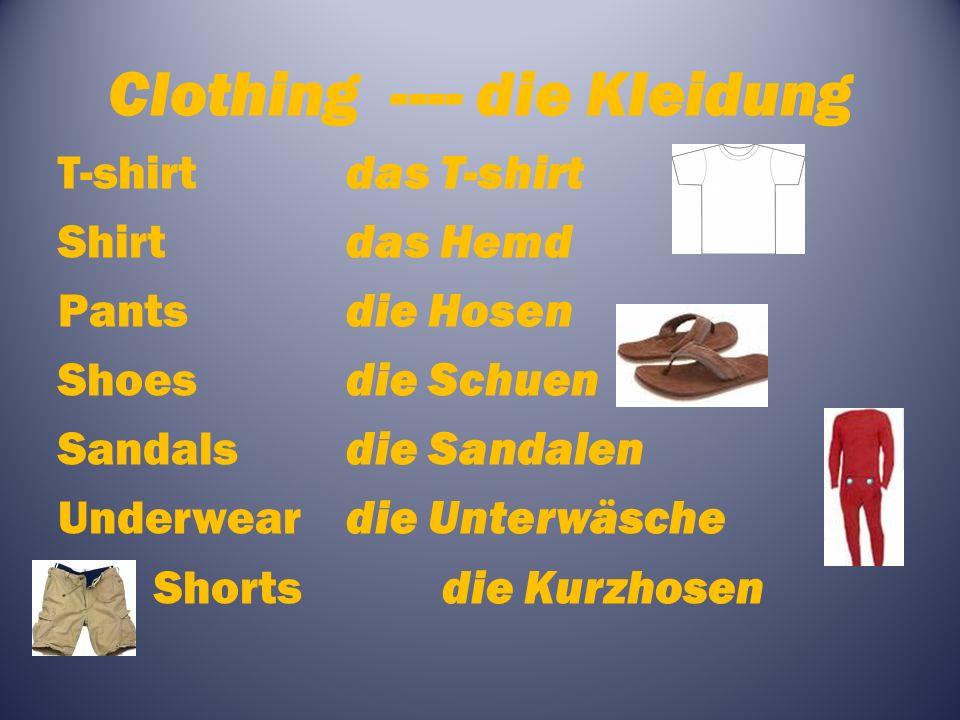 Clothing ---- die Kleidung T-shirtdas T-shirt Shirtdas Hemd Pantsdie Hosen Shoesdie Schuen Sandalsdie Sandalen Underweardie Unterwäsche Shortsdie Kurzhosen