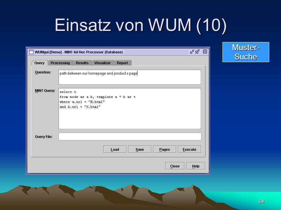 64 Einsatz von WUM (10) Muster-Suche