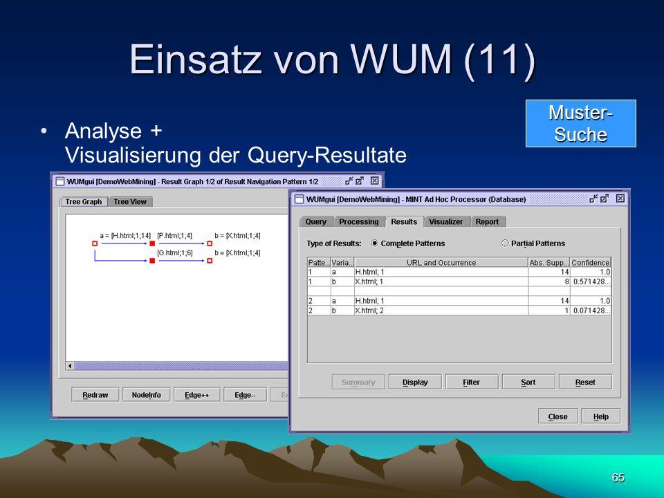 65 Einsatz von WUM (11) Analyse + Visualisierung der Query-Resultate Muster-Suche
