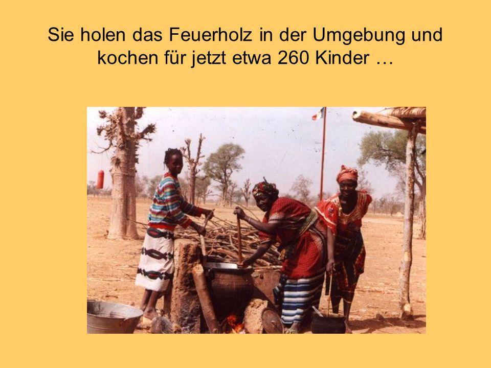 Sie holen das Feuerholz in der Umgebung und kochen für jetzt etwa 260 Kinder …