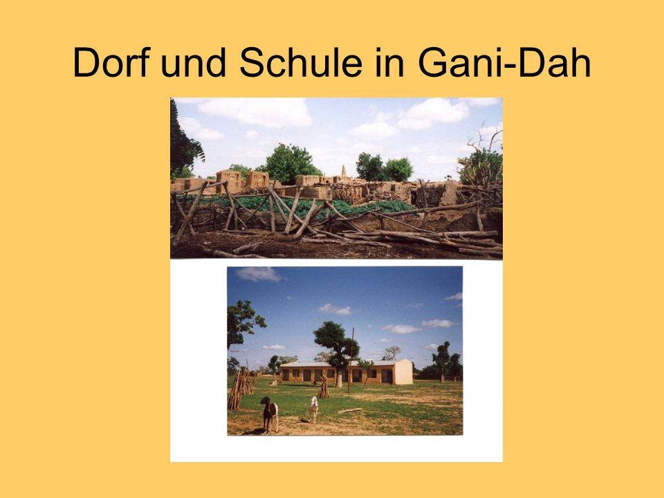 Das Dorf ist ganz aus Lehm erbaut, die Moschee überragt die Hütten