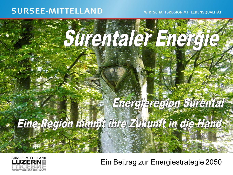 Ein Beitrag zur Energiestrategie 2050