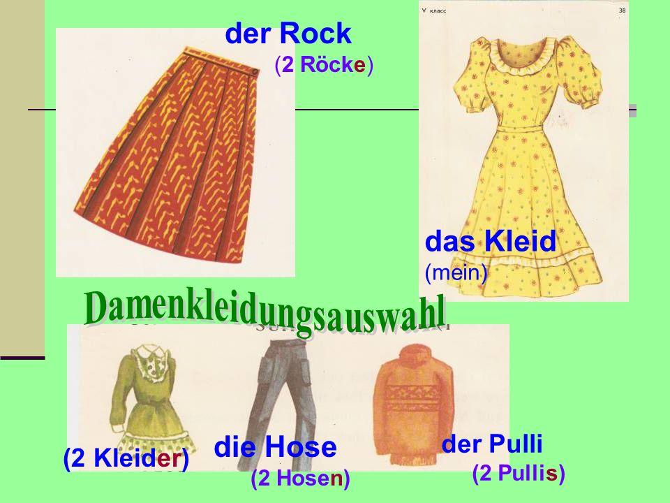 der Rock (2 Röcke) das Kleid (mein) der Pulli (2 Pullis) die Hose (2 Hosen) (2 Kleider)