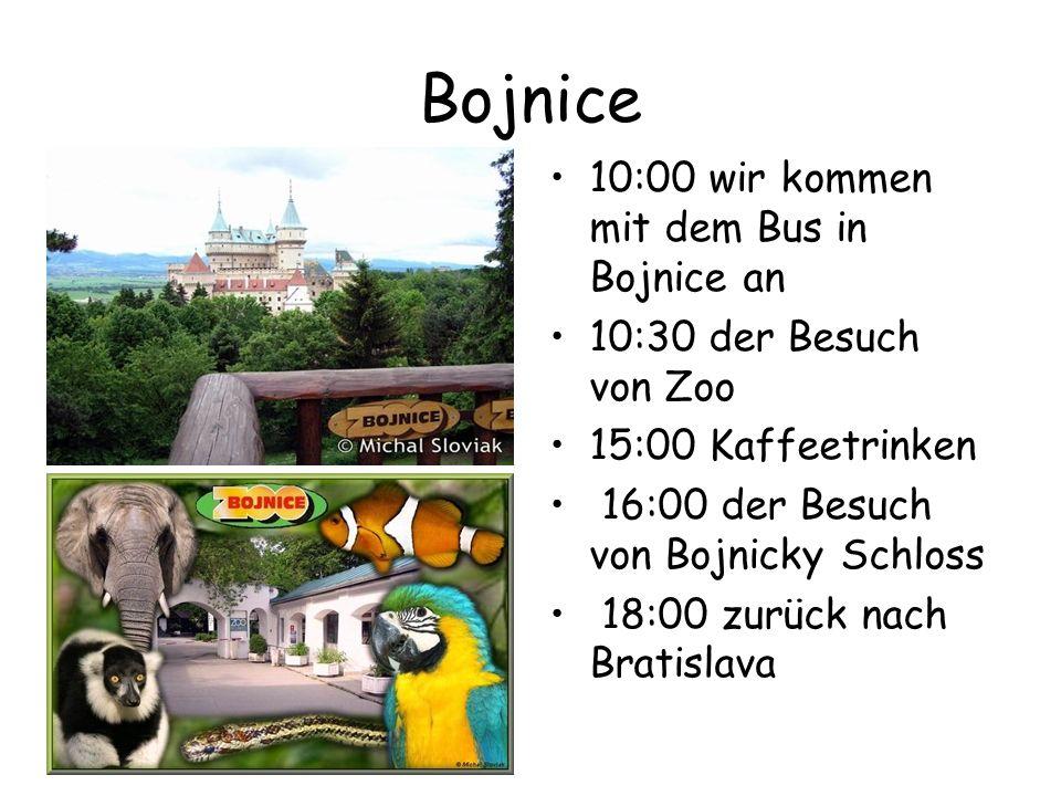 Bojnice 10:00 wir kommen mit dem Bus in Bojnice an 10:30 der Besuch von Zoo 15:00 Kaffeetrinken 16:00 der Besuch von Bojnicky Schloss 18:00 zurück nach Bratislava