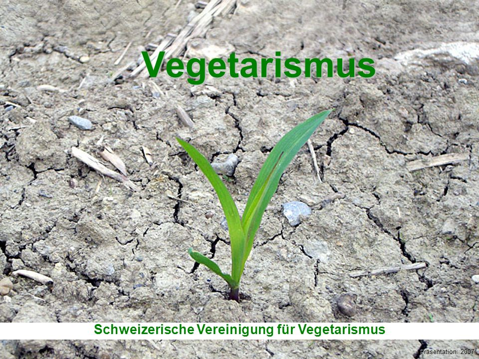 Schweizerische Vereinigung für Vegetarismus (SVV) Vegetarismus Präsentation: 2007 Schweizerische Vereinigung für Vegetarismus
