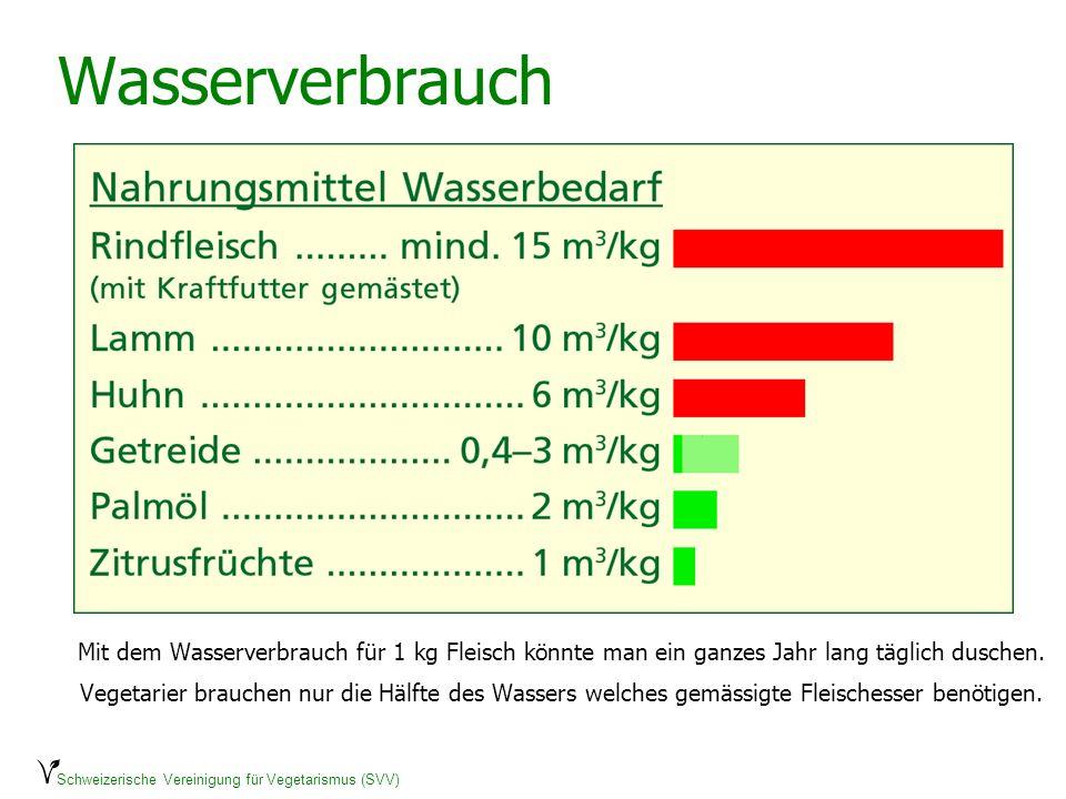 Schweizerische Vereinigung für Vegetarismus (SVV) Wasserverbrauch Mit dem Wasserverbrauch für 1 kg Fleisch könnte man ein ganzes Jahr lang täglich dus