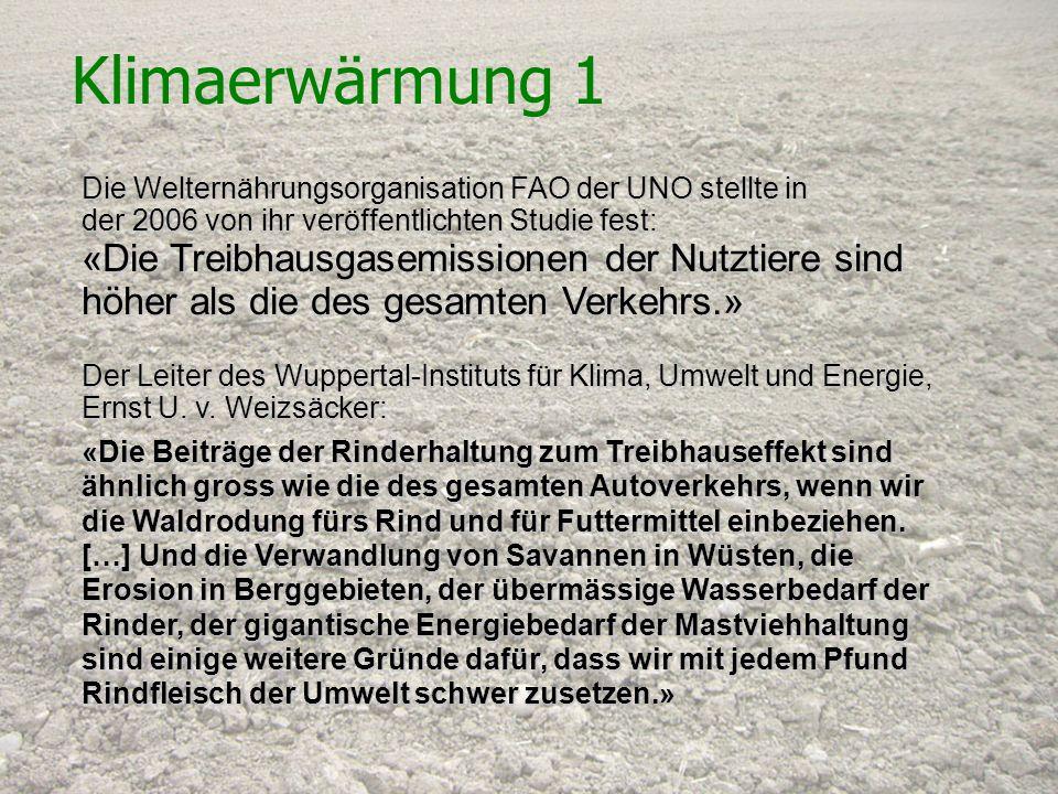 Schweizerische Vereinigung für Vegetarismus (SVV) Klimaerwärmung 1 Die Welternährungsorganisation FAO der UNO stellte in der 2006 von ihr veröffentlic