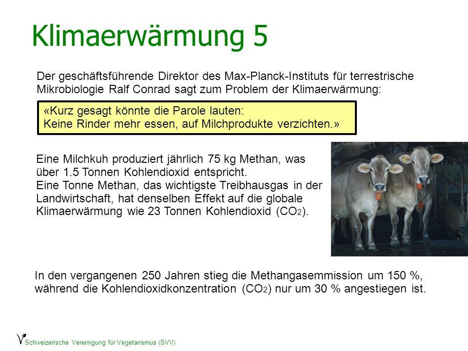 Schweizerische Vereinigung für Vegetarismus (SVV) Beispiel Rindermast Ein einziges Kalb erzeugt in seinem kurzen Leben 4550 kg CO2-Equivalente und benötigt total 16100 Megajoule an Energiezufuhr.