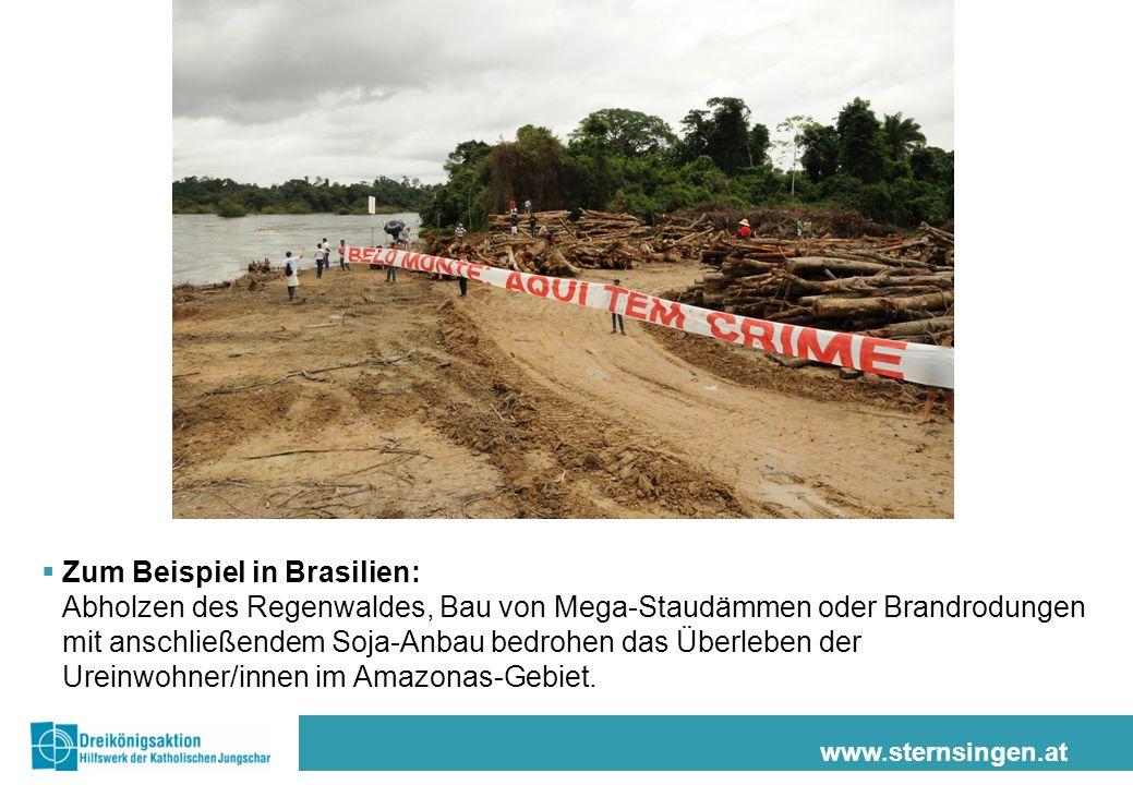 www.sternsingen.at Zum Beispiel in Brasilien: Abholzen des Regenwaldes, Bau von Mega-Staudämmen oder Brandrodungen mit anschließendem Soja-Anbau bedrohen das Überleben der Ureinwohner/innen im Amazonas-Gebiet.