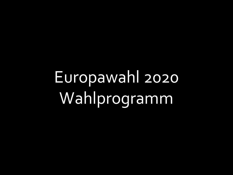 Europawahl 2020 Wahlprogramm