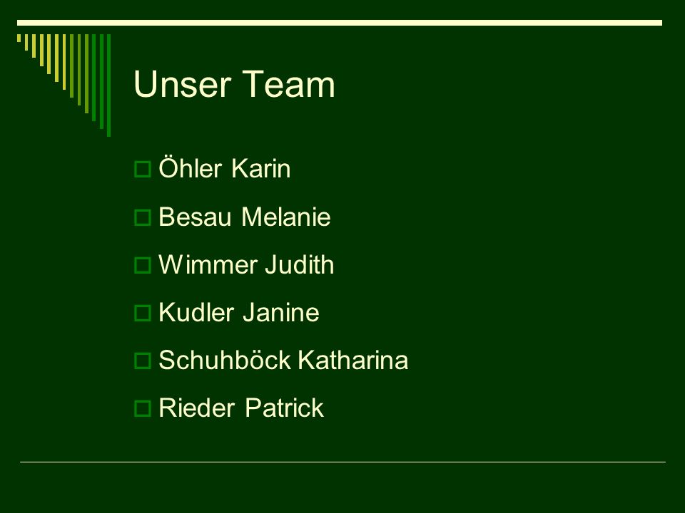 Unser Team Öhler Karin Besau Melanie Wimmer Judith Kudler Janine Schuhböck Katharina Rieder Patrick