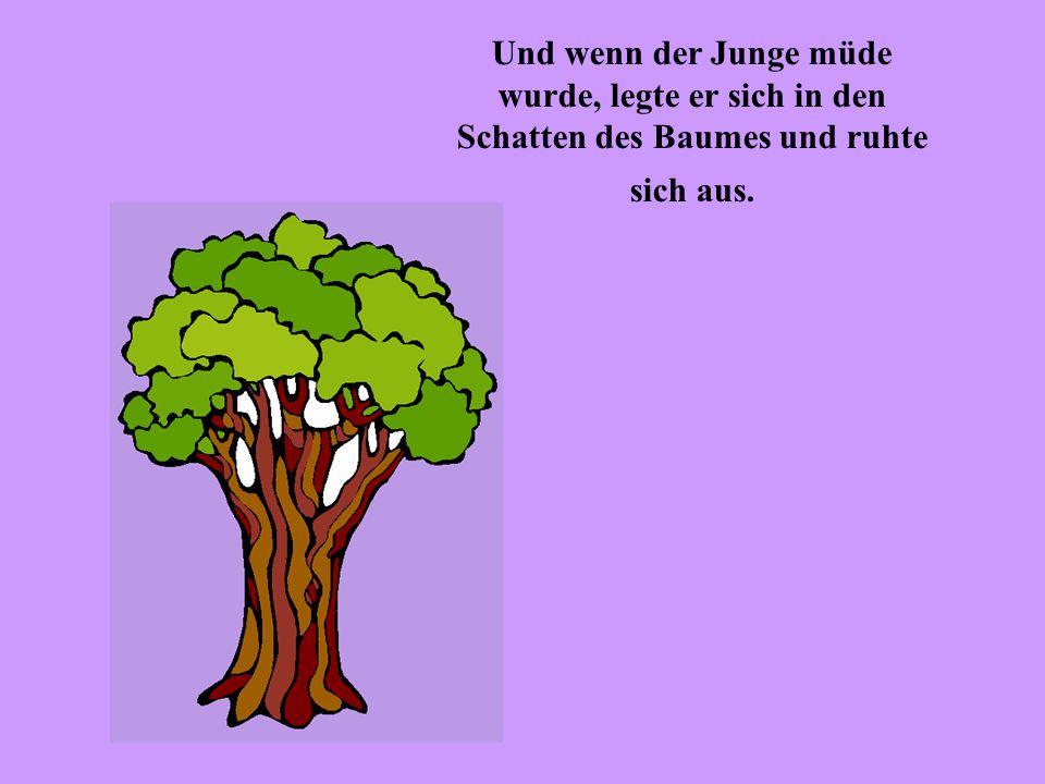 Und der Baum war glücklich … aber nicht richtig …