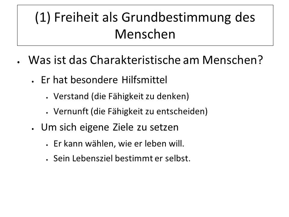 (3) Begrenzung der Freiheit als Basis der Ethik Die Begrenzung wird in einer gemeinsamen Ordnung festgelegt: – Verfassung – Gesetz – Spielregeln der Gesellschaft