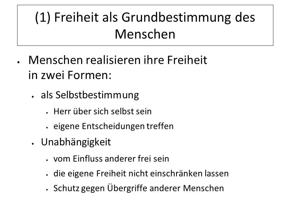 (5) Freiheit im Staat Vertrag ist die Verfassung des Staates in Deutschland: das Grundgesetz zentrales Thema: Freiheit – Allein in den Grundrechten (Art.
