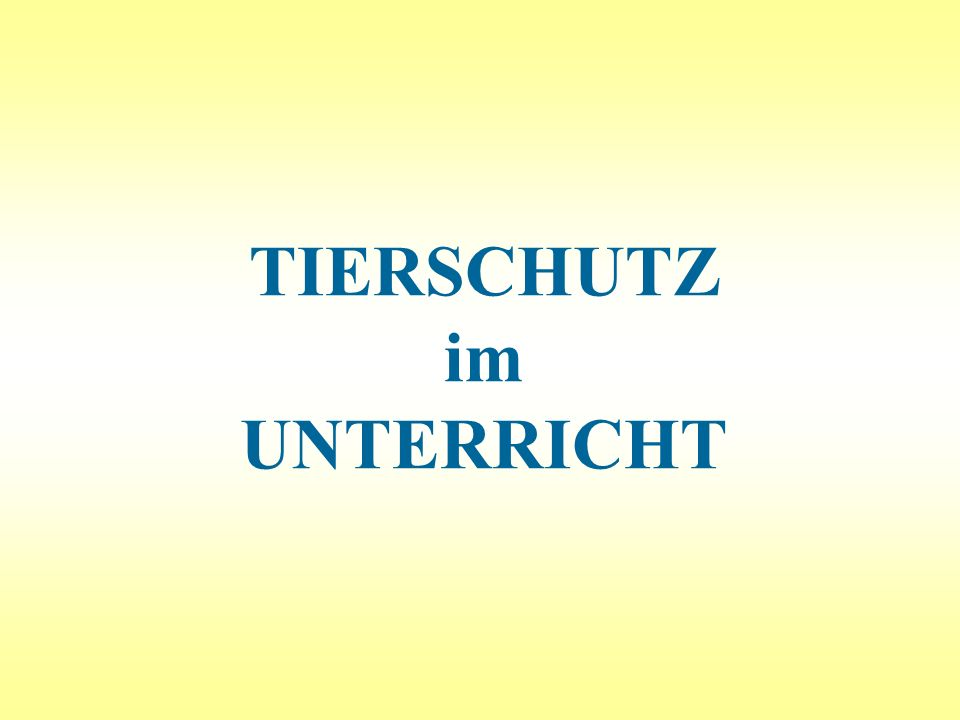 Tierschutz im Unterricht - Heimtiere132 Einzelgängerin.