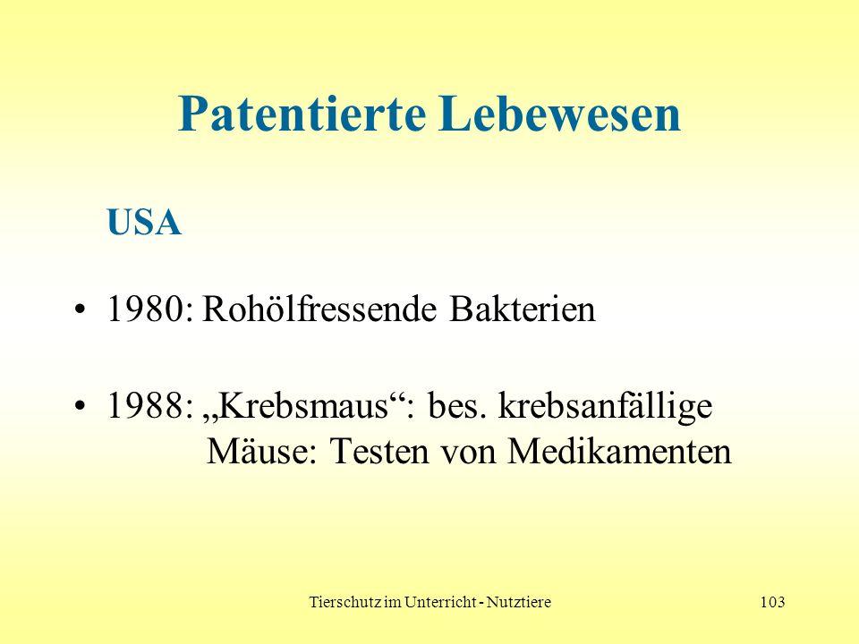 Tierschutz im Unterricht - Nutztiere103 Patentierte Lebewesen USA 1980: Rohölfressende Bakterien 1988: Krebsmaus: bes. krebsanfällige Mäuse: Testen vo