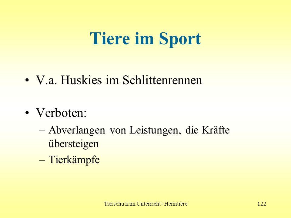 Tierschutz im Unterricht - Heimtiere122 Tiere im Sport V.a. Huskies im Schlittenrennen Verboten: –Abverlangen von Leistungen, die Kräfte übersteigen –