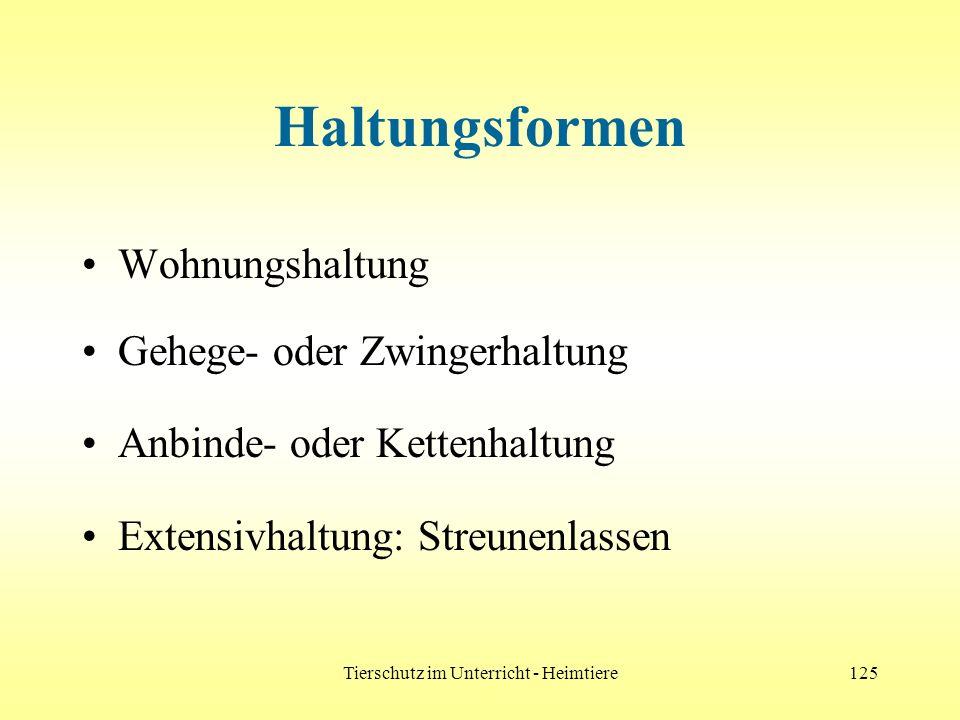 Tierschutz im Unterricht - Heimtiere125 Haltungsformen Wohnungshaltung Gehege- oder Zwingerhaltung Anbinde- oder Kettenhaltung Extensivhaltung: Streun