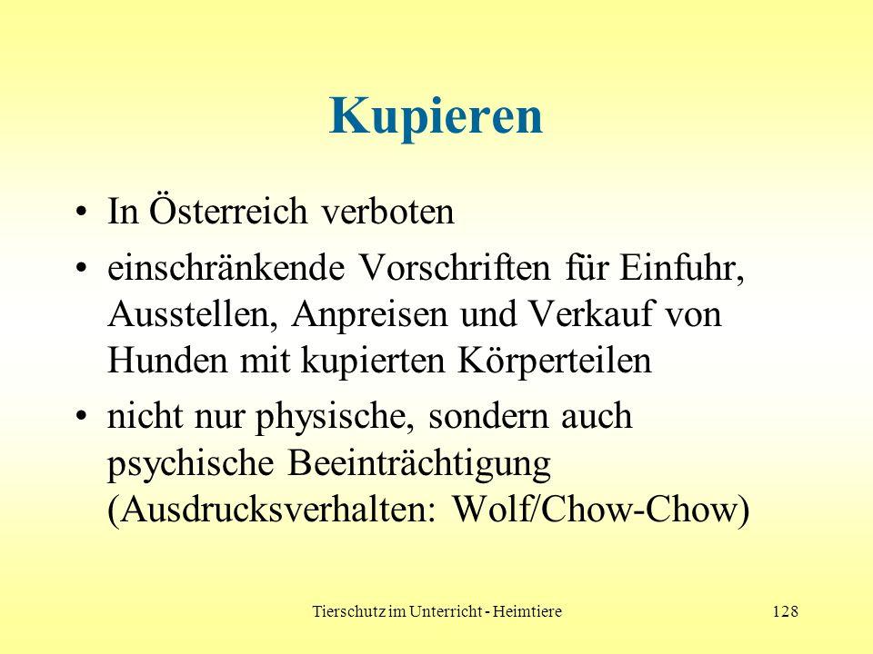 Tierschutz im Unterricht - Heimtiere128 Kupieren In Österreich verboten einschränkende Vorschriften für Einfuhr, Ausstellen, Anpreisen und Verkauf von