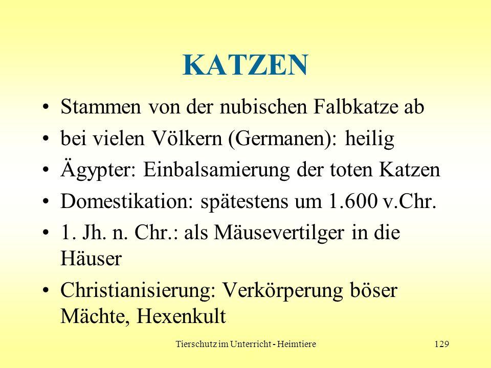 Tierschutz im Unterricht - Heimtiere129 KATZEN Stammen von der nubischen Falbkatze ab bei vielen Völkern (Germanen): heilig Ägypter: Einbalsamierung d