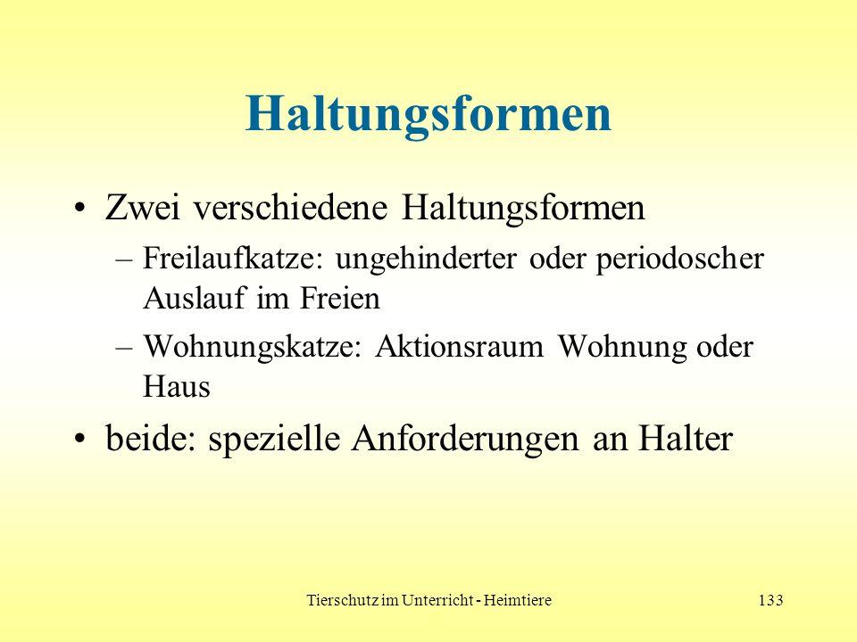 Tierschutz im Unterricht - Heimtiere133 Haltungsformen Zwei verschiedene Haltungsformen –Freilaufkatze: ungehinderter oder periodoscher Auslauf im Fre