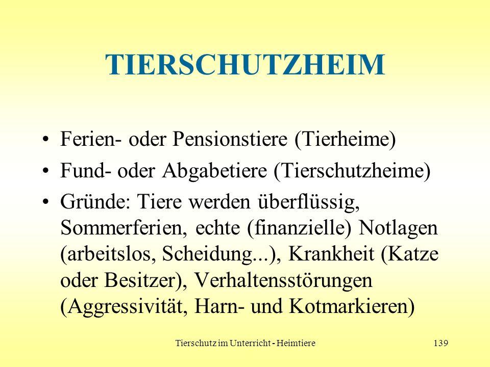 Tierschutz im Unterricht - Heimtiere139 TIERSCHUTZHEIM Ferien- oder Pensionstiere (Tierheime) Fund- oder Abgabetiere (Tierschutzheime) Gründe: Tiere w