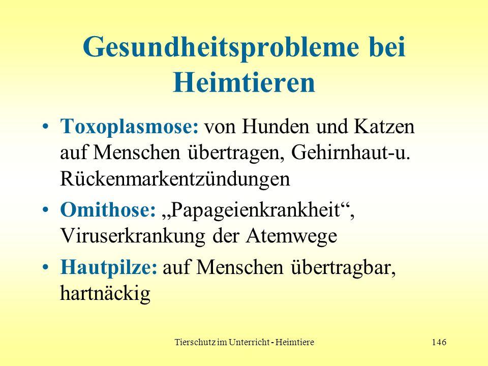 Tierschutz im Unterricht - Heimtiere146 Gesundheitsprobleme bei Heimtieren Toxoplasmose: von Hunden und Katzen auf Menschen übertragen, Gehirnhaut-u.