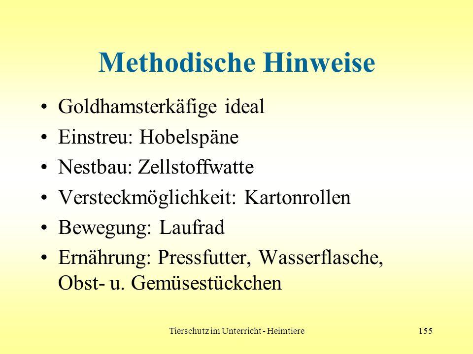Tierschutz im Unterricht - Heimtiere155 Methodische Hinweise Goldhamsterkäfige ideal Einstreu: Hobelspäne Nestbau: Zellstoffwatte Versteckmöglichkeit: