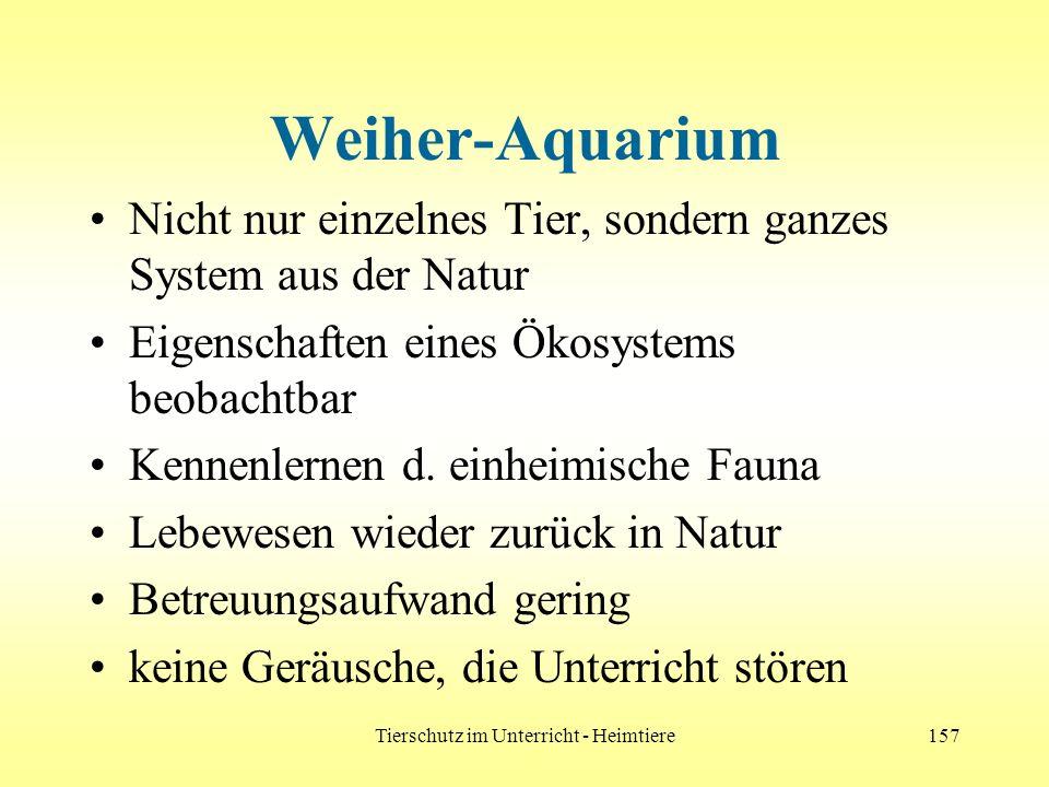 Tierschutz im Unterricht - Heimtiere157 Weiher-Aquarium Nicht nur einzelnes Tier, sondern ganzes System aus der Natur Eigenschaften eines Ökosystems b