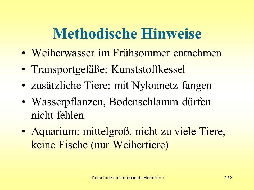 Tierschutz im Unterricht - Heimtiere158 Methodische Hinweise Weiherwasser im Frühsommer entnehmen Transportgefäße: Kunststoffkessel zusätzliche Tiere: