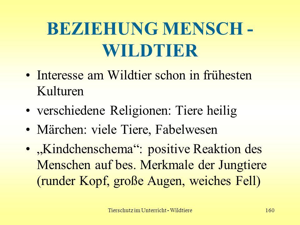 Tierschutz im Unterricht - Wildtiere160 BEZIEHUNG MENSCH - WILDTIER Interesse am Wildtier schon in frühesten Kulturen verschiedene Religionen: Tiere h
