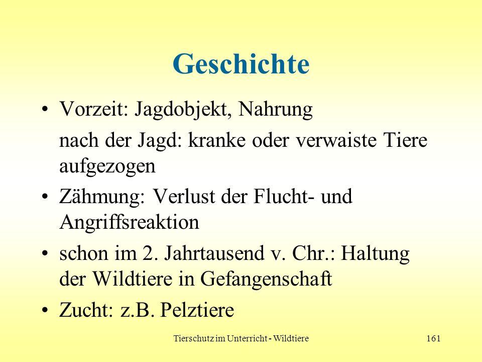 Tierschutz im Unterricht - Wildtiere161 Geschichte Vorzeit: Jagdobjekt, Nahrung nach der Jagd: kranke oder verwaiste Tiere aufgezogen Zähmung: Verlust
