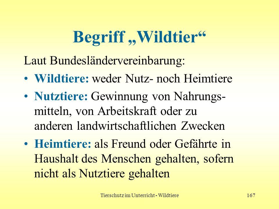 Tierschutz im Unterricht - Wildtiere167 Begriff Wildtier Laut Bundesländervereinbarung: Wildtiere: weder Nutz- noch Heimtiere Nutztiere: Gewinnung von