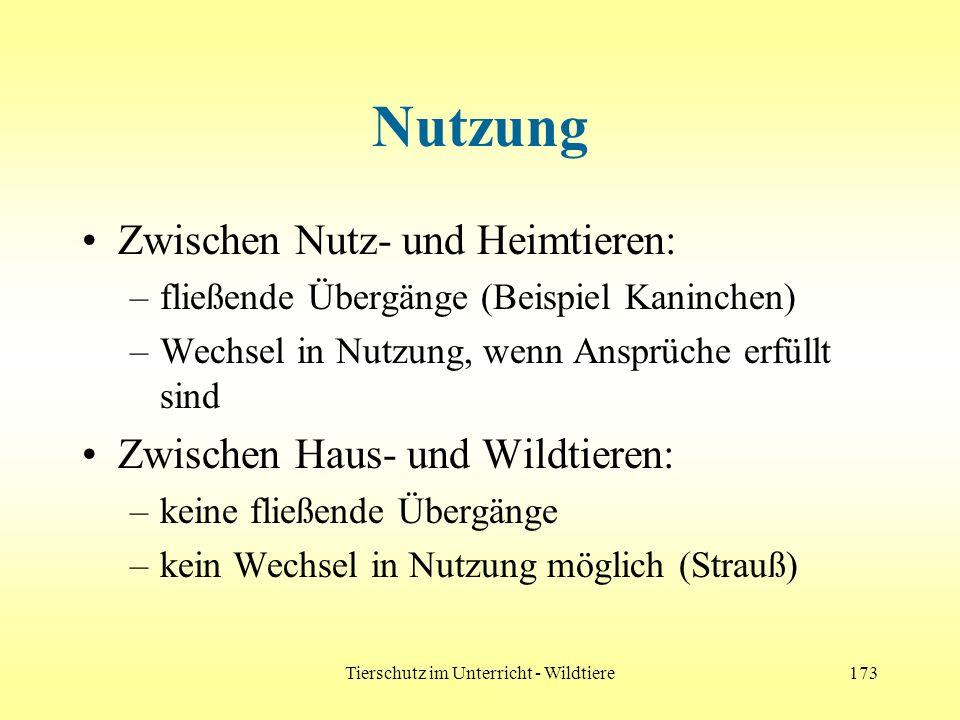 Tierschutz im Unterricht - Wildtiere173 Nutzung Zwischen Nutz- und Heimtieren: –fließende Übergänge (Beispiel Kaninchen) –Wechsel in Nutzung, wenn Ans