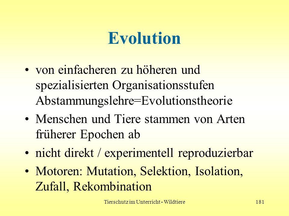 Tierschutz im Unterricht - Wildtiere181 Evolution von einfacheren zu höheren und spezialisierten Organisationsstufen Abstammungslehre=Evolutionstheori