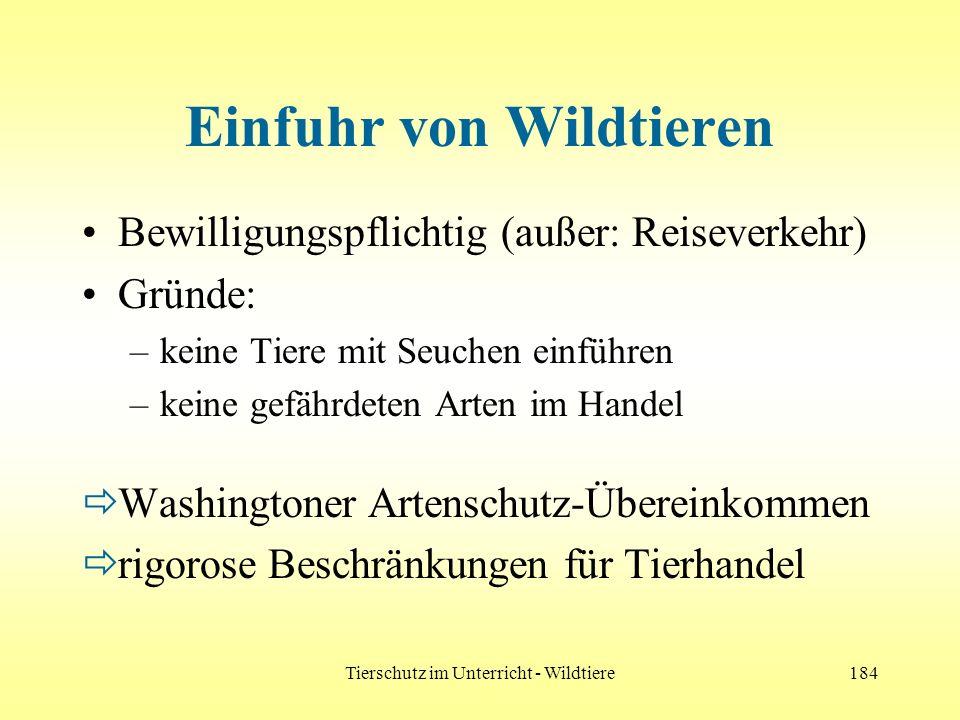 Tierschutz im Unterricht - Wildtiere184 Einfuhr von Wildtieren Bewilligungspflichtig (außer: Reiseverkehr) Gründe: –keine Tiere mit Seuchen einführen