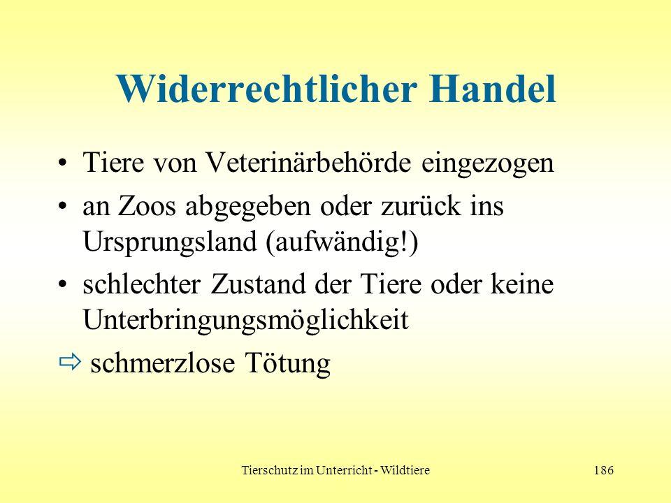 Tierschutz im Unterricht - Wildtiere186 Widerrechtlicher Handel Tiere von Veterinärbehörde eingezogen an Zoos abgegeben oder zurück ins Ursprungsland